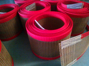 PTFE Mesh Belt, Conveyor Mesh Belt